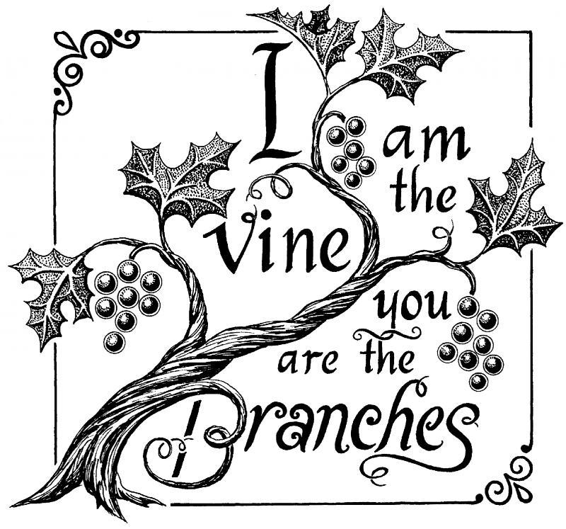 I Am_the_Vine.2